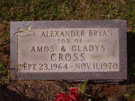 CROSS, ALEXANDER BRYAN - Meigs County, Ohio | ALEXANDER BRYAN CROSS - Ohio Gravestone Photos