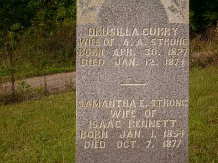 STRONG, SAMANTHA E. - Meigs County, Ohio | SAMANTHA E. STRONG - Ohio Gravestone Photos