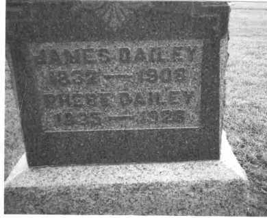 DANFORTH DAILEY, PHEBE - Meigs County, Ohio | PHEBE DANFORTH DAILEY - Ohio Gravestone Photos