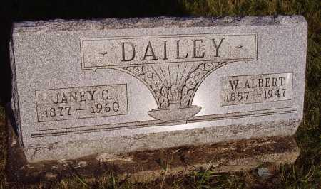 DAILEY, W. ALBERT - Meigs County, Ohio | W. ALBERT DAILEY - Ohio Gravestone Photos
