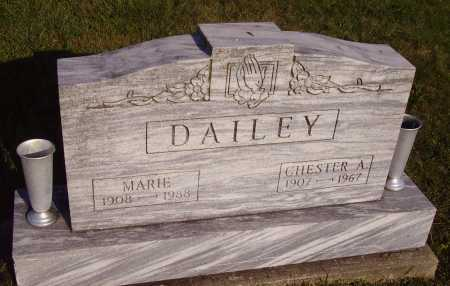 DAILEY, MARIE - Meigs County, Ohio | MARIE DAILEY - Ohio Gravestone Photos