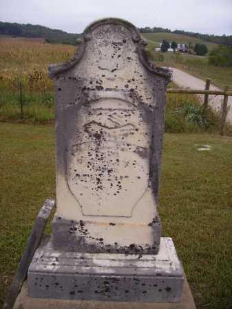 DAINS, KASSON - Meigs County, Ohio | KASSON DAINS - Ohio Gravestone Photos