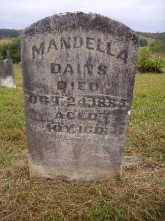 DAINS, MANDELLA - Meigs County, Ohio | MANDELLA DAINS - Ohio Gravestone Photos