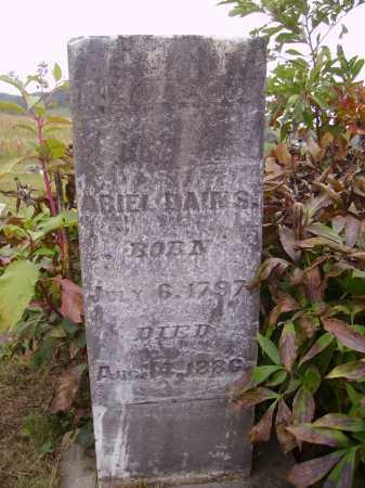 SHUMWAY DAINS, REBECCA - Meigs County, Ohio | REBECCA SHUMWAY DAINS - Ohio Gravestone Photos