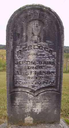 DAINS, REBECCA - Meigs County, Ohio   REBECCA DAINS - Ohio Gravestone Photos