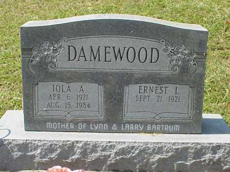 DAMEWOOD, IOLA A. - Meigs County, Ohio | IOLA A. DAMEWOOD - Ohio Gravestone Photos