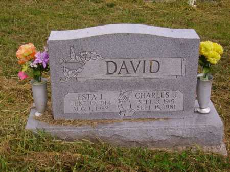 DAVID, CHARLES J. - Meigs County, Ohio | CHARLES J. DAVID - Ohio Gravestone Photos