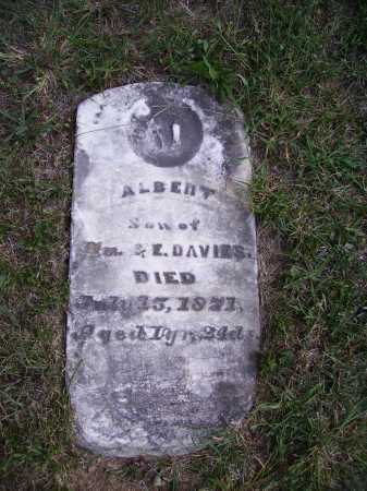 DAVIES, ALBERT - Meigs County, Ohio | ALBERT DAVIES - Ohio Gravestone Photos