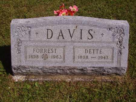 DAVIS, DETTE - Meigs County, Ohio | DETTE DAVIS - Ohio Gravestone Photos