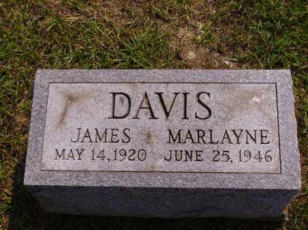 DAVIS, JAMES - Meigs County, Ohio | JAMES DAVIS - Ohio Gravestone Photos