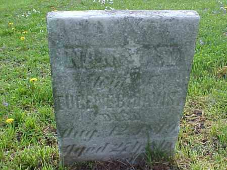 DAVIS, NANCY N. - Meigs County, Ohio | NANCY N. DAVIS - Ohio Gravestone Photos