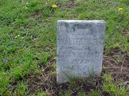 DAVIS, WALTER SCOTT - Meigs County, Ohio | WALTER SCOTT DAVIS - Ohio Gravestone Photos