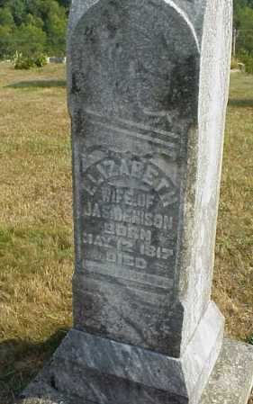 DENISON, ELIZABETH - Meigs County, Ohio | ELIZABETH DENISON - Ohio Gravestone Photos