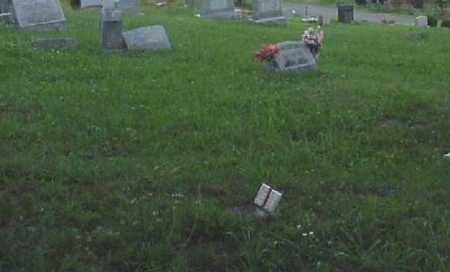 DENNIS, AARON H. - Meigs County, Ohio | AARON H. DENNIS - Ohio Gravestone Photos