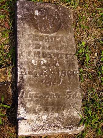 DEWITT, FLORILA - Meigs County, Ohio | FLORILA DEWITT - Ohio Gravestone Photos