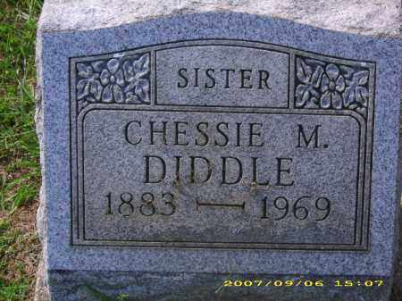 DIDDLE, CHESSIE M - Meigs County, Ohio | CHESSIE M DIDDLE - Ohio Gravestone Photos