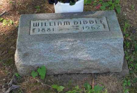 DIDDLE, WILLIAM - Meigs County, Ohio | WILLIAM DIDDLE - Ohio Gravestone Photos