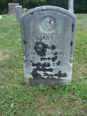DILL, MARY E. - Meigs County, Ohio | MARY E. DILL - Ohio Gravestone Photos