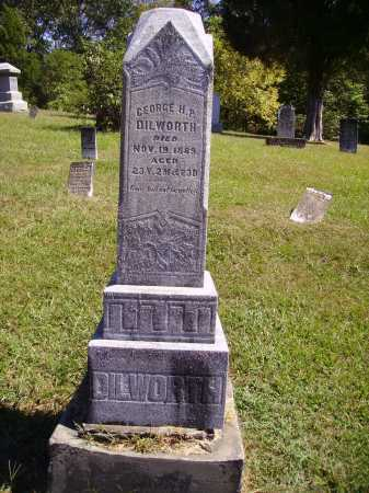 DILWORTH, GEORGE H.P. - OVERALL VIEW - Meigs County, Ohio | GEORGE H.P. - OVERALL VIEW DILWORTH - Ohio Gravestone Photos