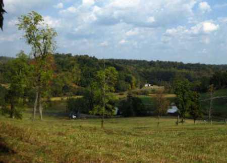 DOWNING, HARRIET - Meigs County, Ohio   HARRIET DOWNING - Ohio Gravestone Photos