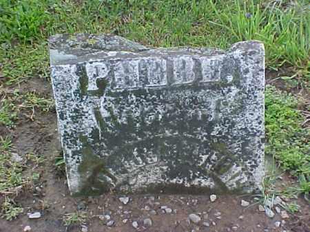DOWNING, PHEBE - Meigs County, Ohio | PHEBE DOWNING - Ohio Gravestone Photos