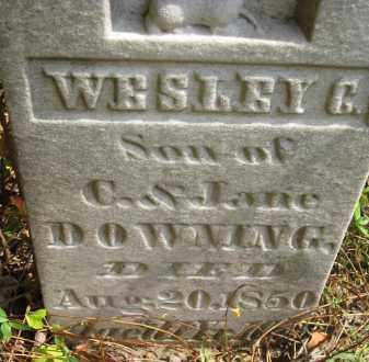 DOWNING, WESLEY G - Meigs County, Ohio | WESLEY G DOWNING - Ohio Gravestone Photos