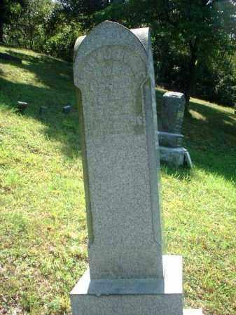 DOYLE, MARY J. - Meigs County, Ohio | MARY J. DOYLE - Ohio Gravestone Photos