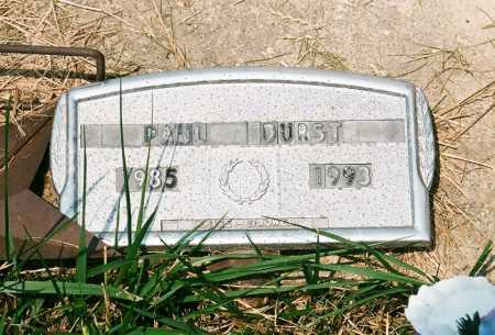 DURST, PAUL - Meigs County, Ohio | PAUL DURST - Ohio Gravestone Photos