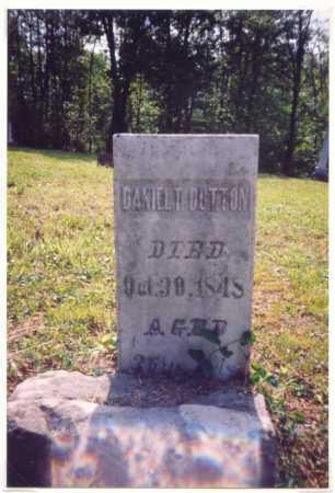 DUTTON, DANIEL T. - Meigs County, Ohio | DANIEL T. DUTTON - Ohio Gravestone Photos