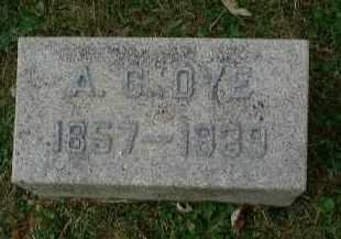 DOUGLAS DYE, ADALINE C. - Meigs County, Ohio | ADALINE C. DOUGLAS DYE - Ohio Gravestone Photos