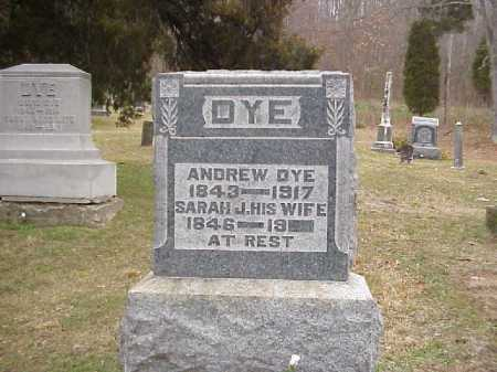 DYE, ANDREW - Meigs County, Ohio | ANDREW DYE - Ohio Gravestone Photos