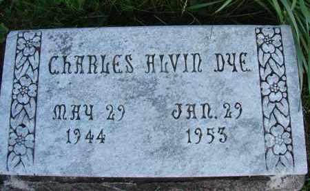 DYE, CHARLES ALVIN - Meigs County, Ohio | CHARLES ALVIN DYE - Ohio Gravestone Photos