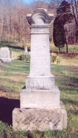 DYE, SR., MARTIN - Meigs County, Ohio | MARTIN DYE, SR. - Ohio Gravestone Photos