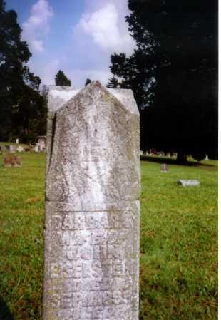 EISELSTEIN, BARBARA - Meigs County, Ohio | BARBARA EISELSTEIN - Ohio Gravestone Photos
