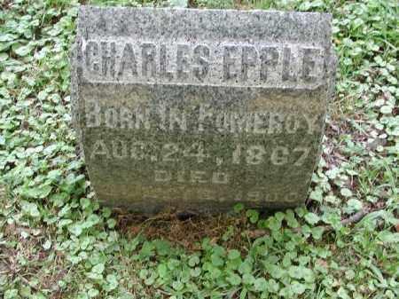 EPPLE, CHARLES - Meigs County, Ohio   CHARLES EPPLE - Ohio Gravestone Photos