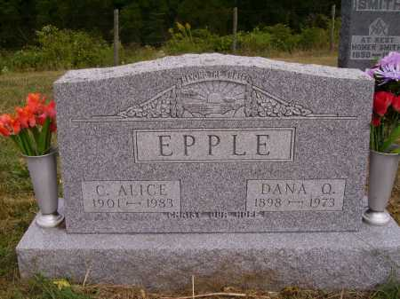 EPPLE, DANA Q. - Meigs County, Ohio | DANA Q. EPPLE - Ohio Gravestone Photos