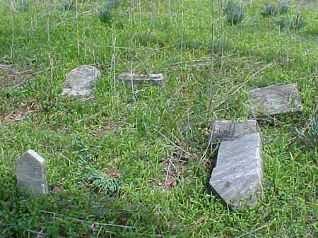 FALLEN, TOMBSTONES - Meigs County, Ohio | TOMBSTONES FALLEN - Ohio Gravestone Photos
