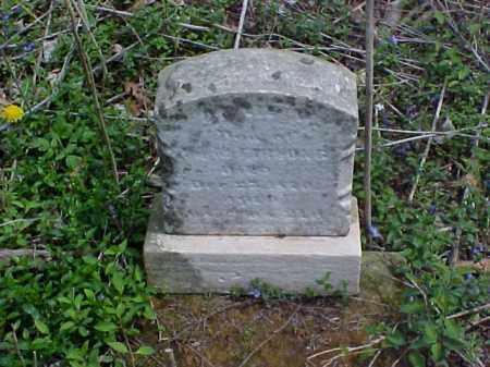 FARNUNG, ANNIE M. - Meigs County, Ohio | ANNIE M. FARNUNG - Ohio Gravestone Photos