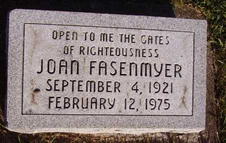 FASENMYER, JOAN - Meigs County, Ohio | JOAN FASENMYER - Ohio Gravestone Photos