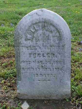 FESLER, WILLIAM - Meigs County, Ohio | WILLIAM FESLER - Ohio Gravestone Photos