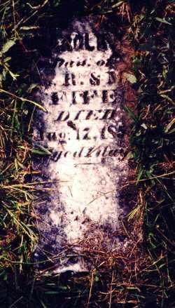 FIFE, CAROLINE - Meigs County, Ohio | CAROLINE FIFE - Ohio Gravestone Photos