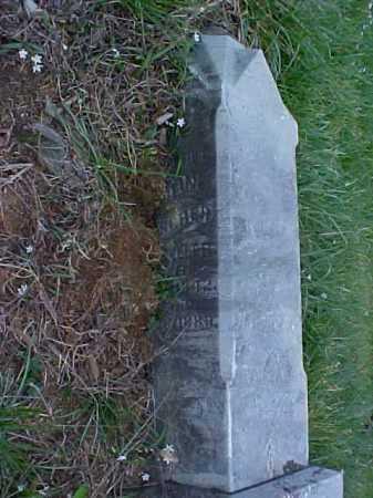 KELLER FISCHER, KAROLINE - Meigs County, Ohio | KAROLINE KELLER FISCHER - Ohio Gravestone Photos