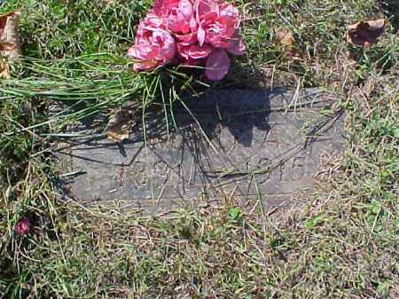 FISCHER, MARY A. - Meigs County, Ohio | MARY A. FISCHER - Ohio Gravestone Photos