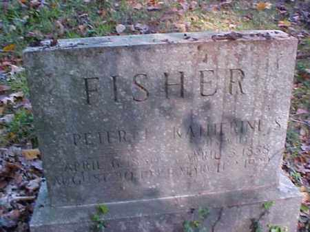 FISHER, PETER J. - Meigs County, Ohio | PETER J. FISHER - Ohio Gravestone Photos