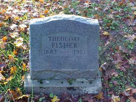 FISHER, THEODORE - Meigs County, Ohio | THEODORE FISHER - Ohio Gravestone Photos