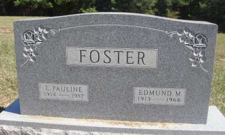 FOSTER, EDMUND M. - Meigs County, Ohio | EDMUND M. FOSTER - Ohio Gravestone Photos