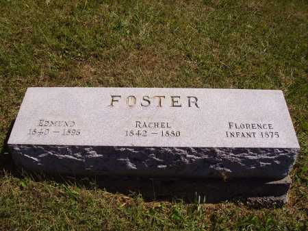 FOSTER, EDMUND - Meigs County, Ohio | EDMUND FOSTER - Ohio Gravestone Photos