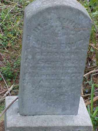 FRUTH, GEORGE - Meigs County, Ohio | GEORGE FRUTH - Ohio Gravestone Photos