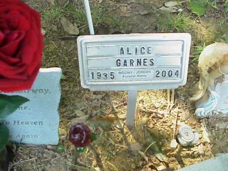 GARNES, ALICE - Meigs County, Ohio | ALICE GARNES - Ohio Gravestone Photos