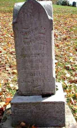 WALKER GEYER, CARRIE - Meigs County, Ohio | CARRIE WALKER GEYER - Ohio Gravestone Photos